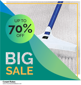 6 Best Carpet Rakes Black Friday 2021 and Cyber Monday Deals | Huge Discount