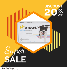 7 Best Dog Dna Tests Black Friday 2020 and Cyber Monday Deals [Up to 30% Discount]