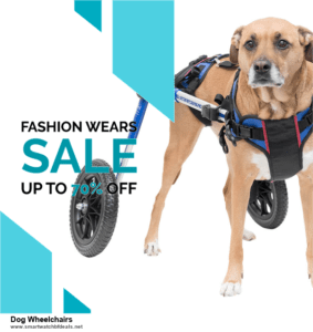 9 Best Black Friday and Cyber Monday Dog Wheelchairs Deals 2020 [Up to 40% OFF]