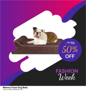 6 Best Memory Foam Dog Beds Black Friday 2020 and Cyber Monday Deals | Huge Discount